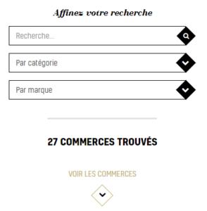 Filtre de recherche plateforme web Mâcon Tendance
